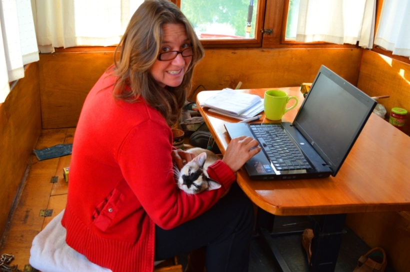 On board our Dutch barge again - with Lily the cat who adopted us! And we're still renovating.