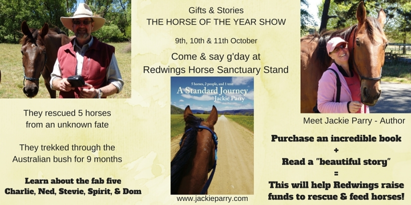 Redwings Horse Charity (4)
