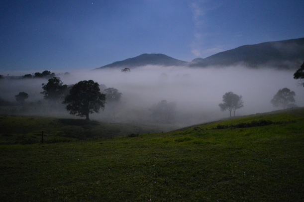 Mist rolling along our land under a full moon!